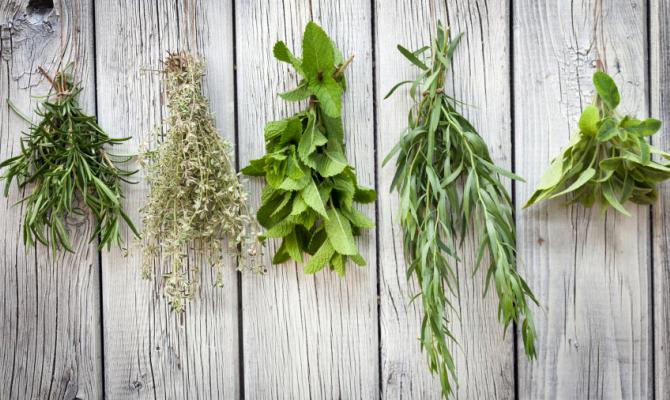 Odori & Erbe aromatiche